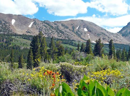 Mount Olsen