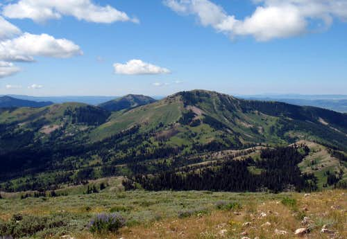 Piney Peak (ID)