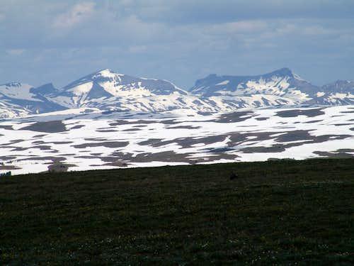 Younts Peak & Thorofare Mountain