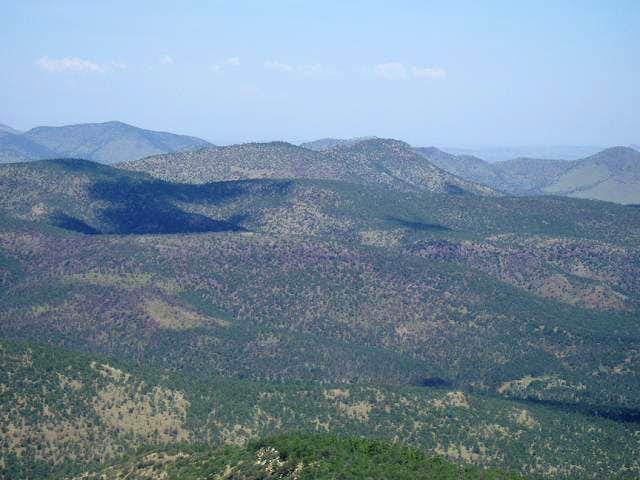 McDaniel Mountain