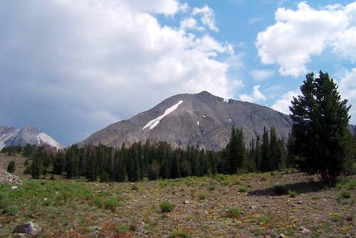 WCP-7 from Iron Basin (NW)