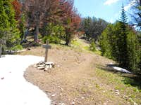 Junction of Mile Creek and Targhee Creek trails