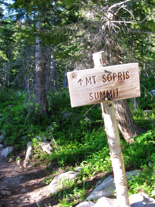 Trail to summit Mount Sopris