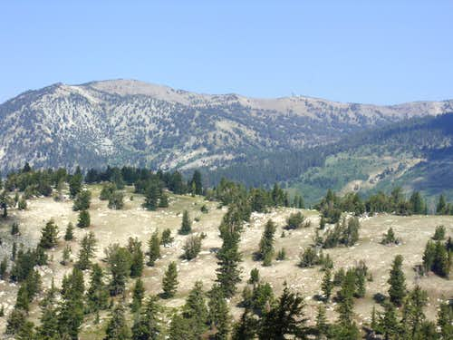 View of the Relay Ridge from Point 9081