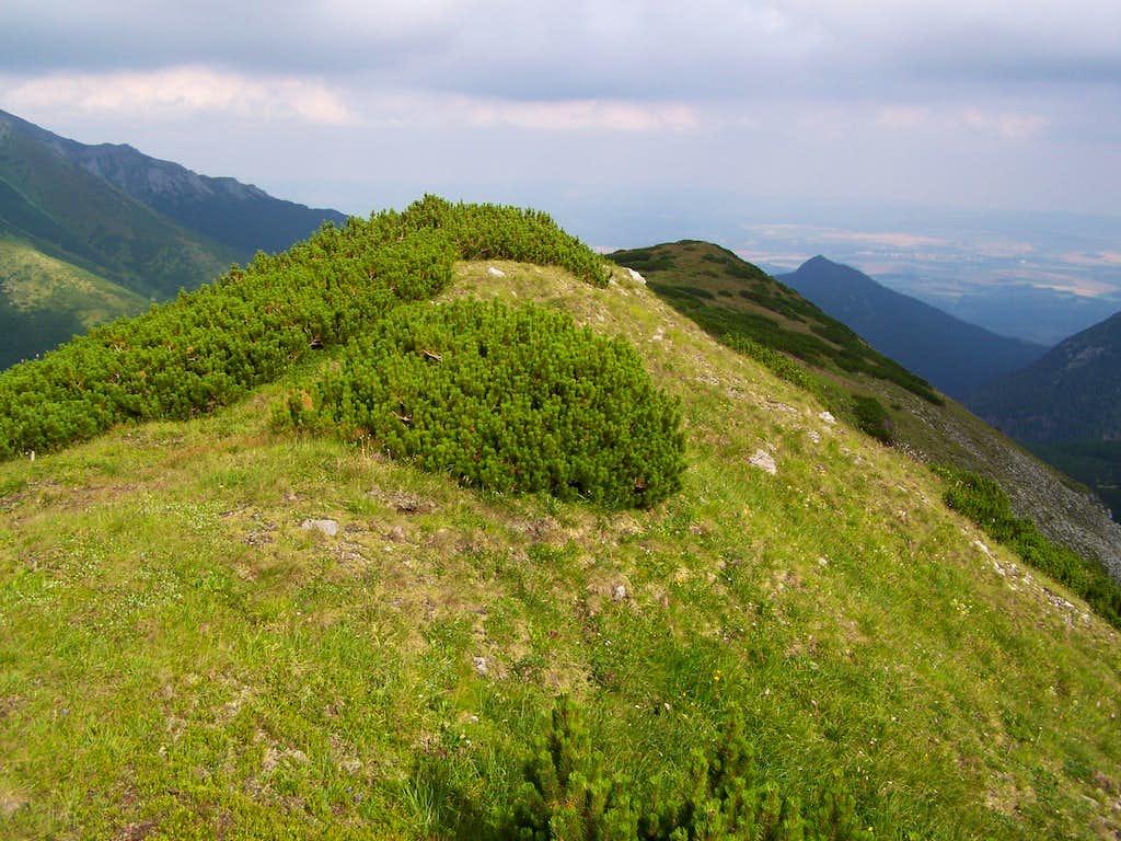 The peak of Belianska kopa