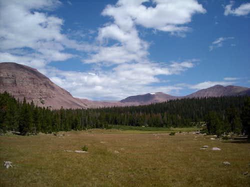 Timothy Basin