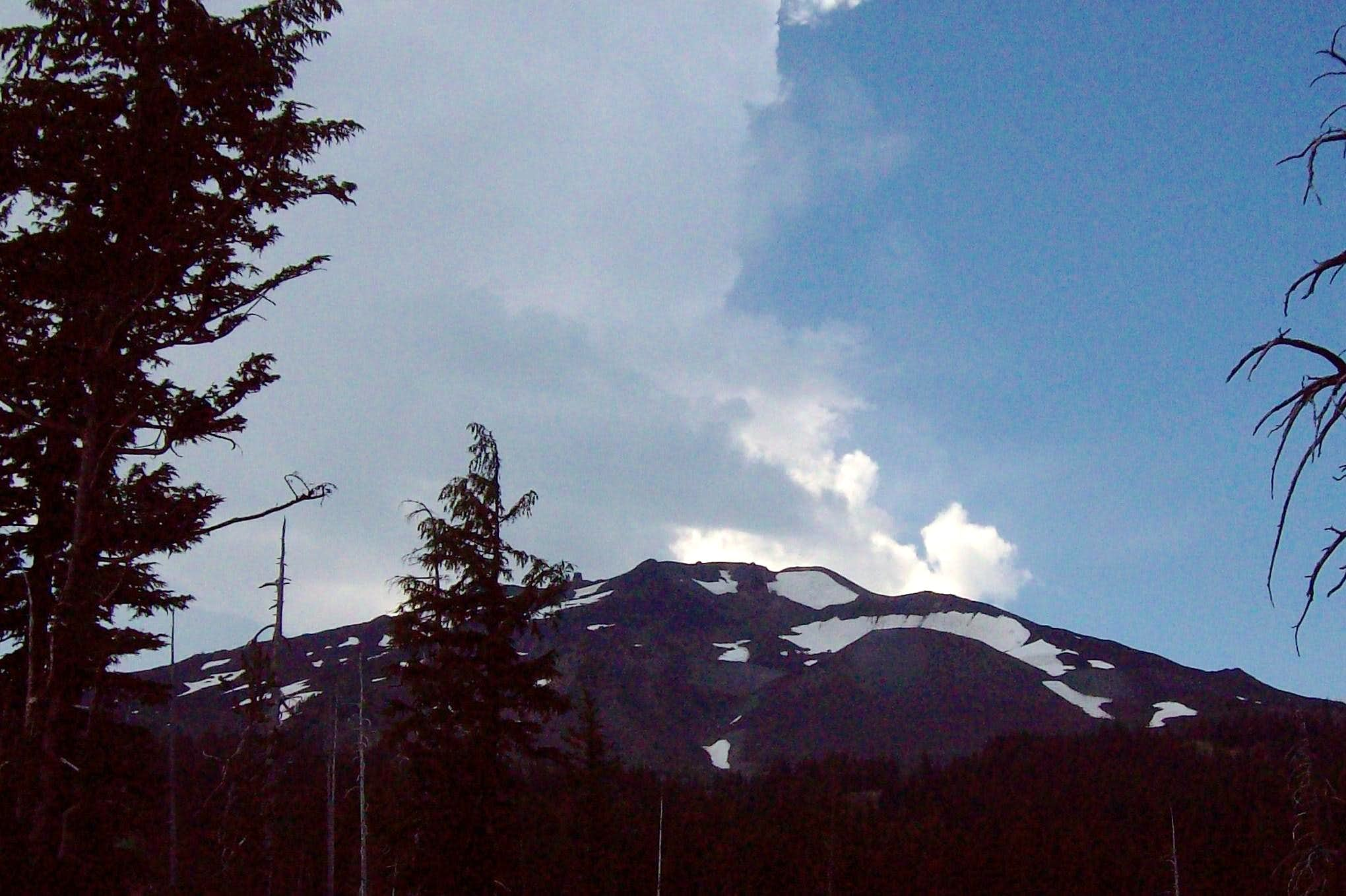 The Summit Cones of Bachelor