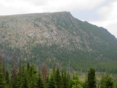 Wolframite Mountain