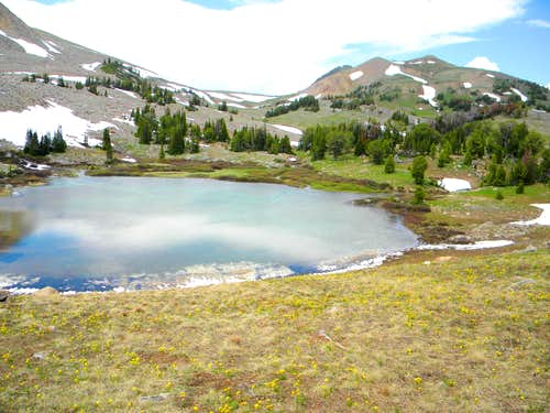 Targhee Basin and Sheep Point