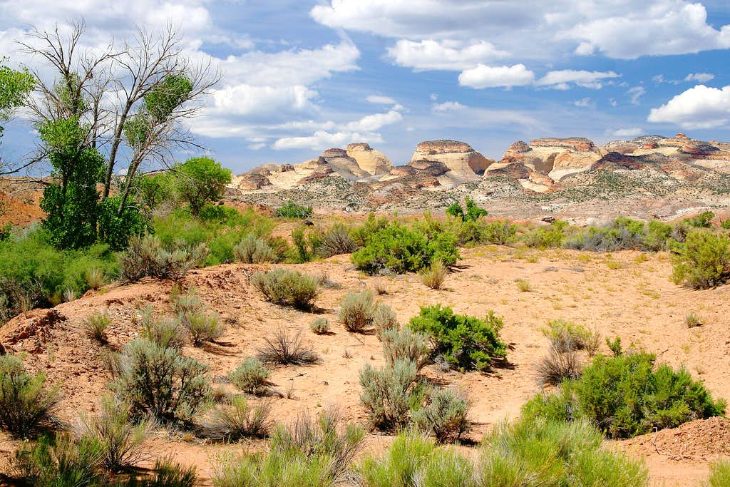 Domes of Capitol Reef