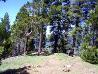 Unal Peak 05-16-2009