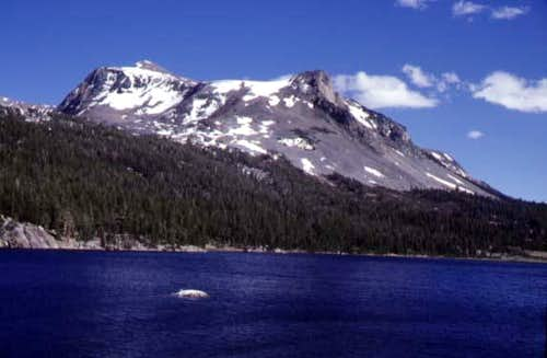 Mount Dana and Tioga Lake,...