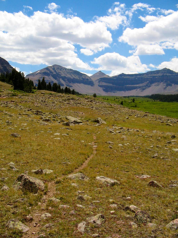 Henry's Fork Trail