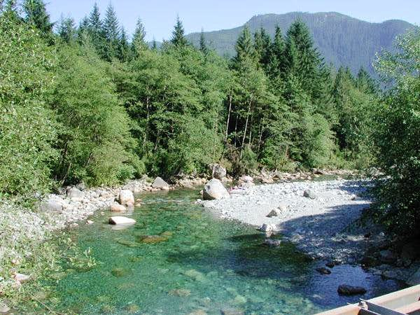 Gold Creek from right near...