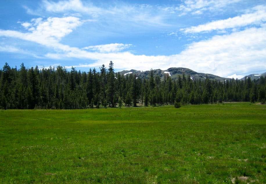 Lower Gardner Meadows