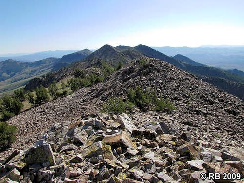 McAfee Peak summit view