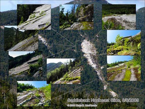 Saddleback Bushwhack via NE Slide