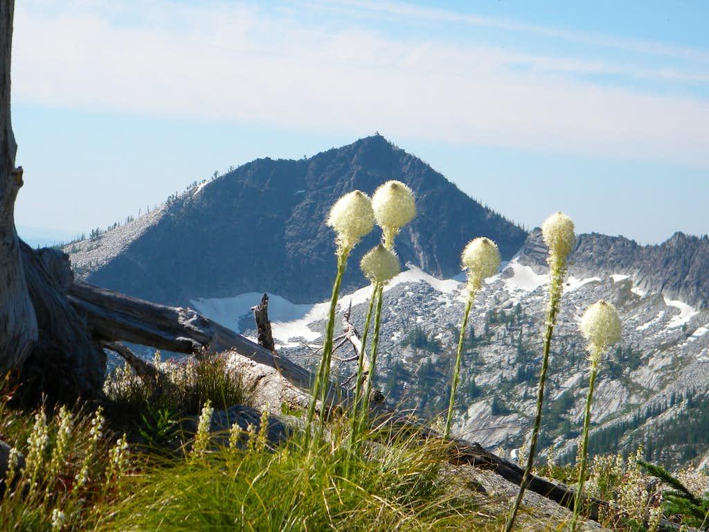 Grave Peak and Bear Grass