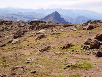 Wetterhorn from Uncompahgre s Wide, Flat Summit