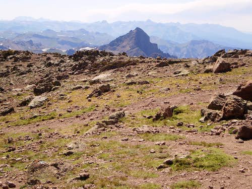 Wetterhorn from Uncompahgre\'s Wide, Flat Summit