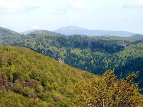Ballon d'Alsace - Summit view...