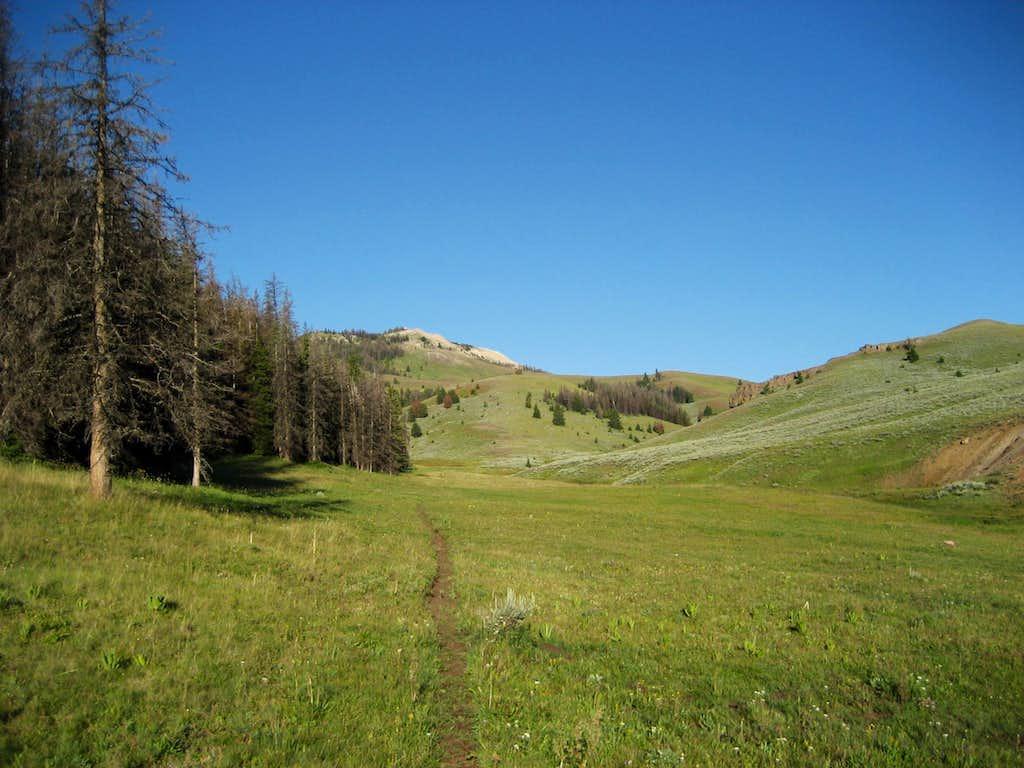Trout Peak Trail