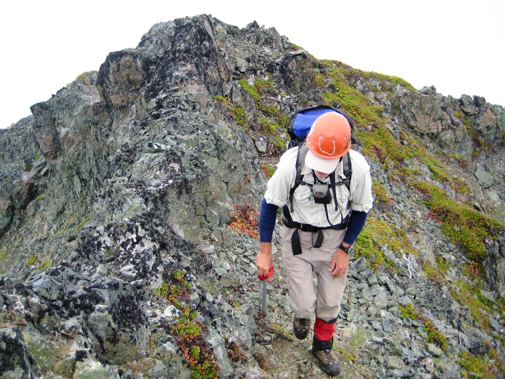 Stepping onto The Summit