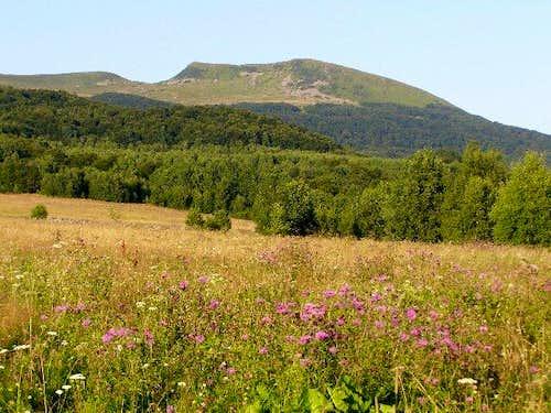 Mount Tarnica (1346 m)