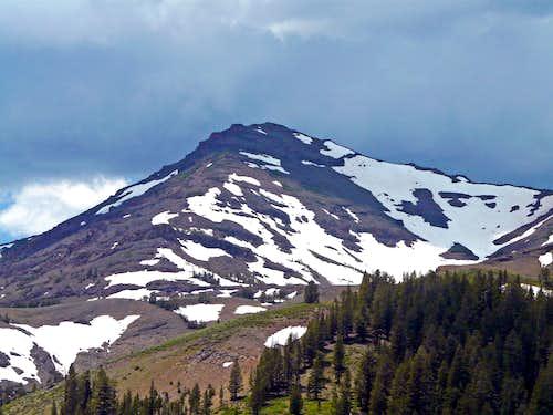 Pacific Crest Peak - Sonora Pass