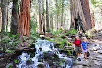 JMT near Nevada Falls Yosemite NP