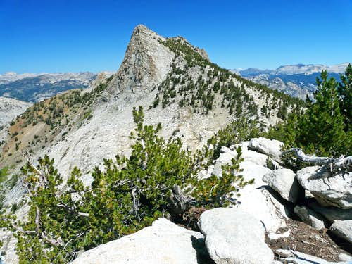 Tuolumne Peak from the southeast
