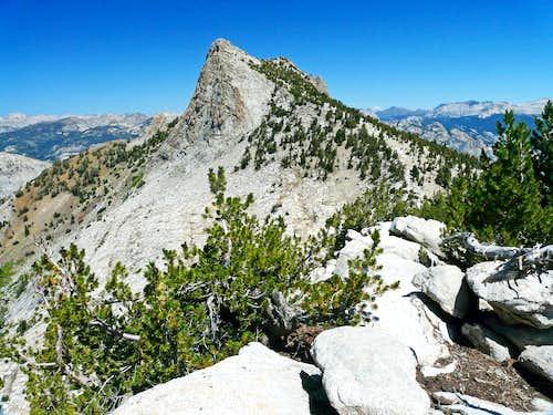 Tuolumne Peak