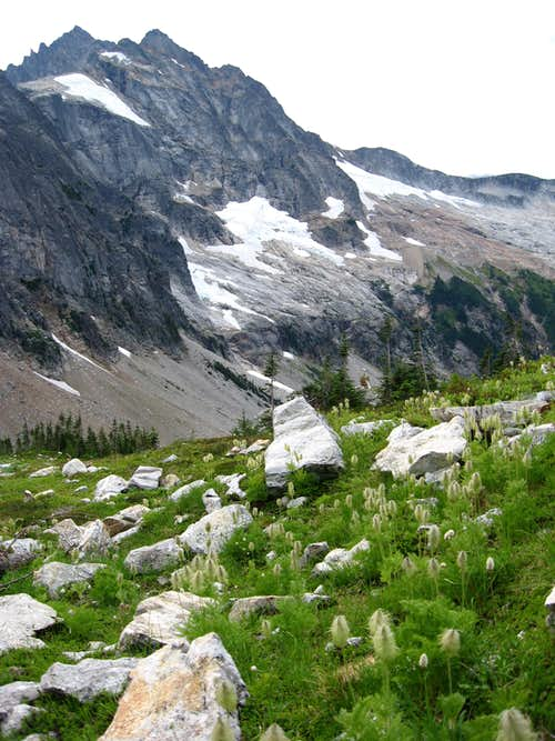 Buckner and the Thunder Glacier from Logan's approach