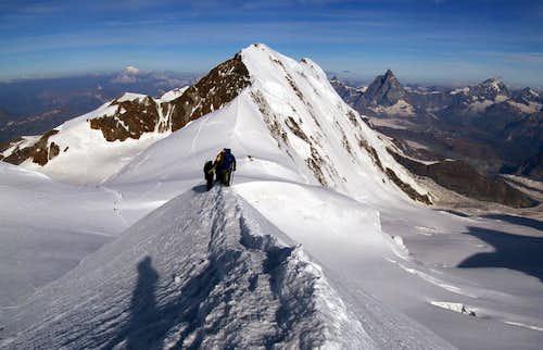 Parrot summit ridge