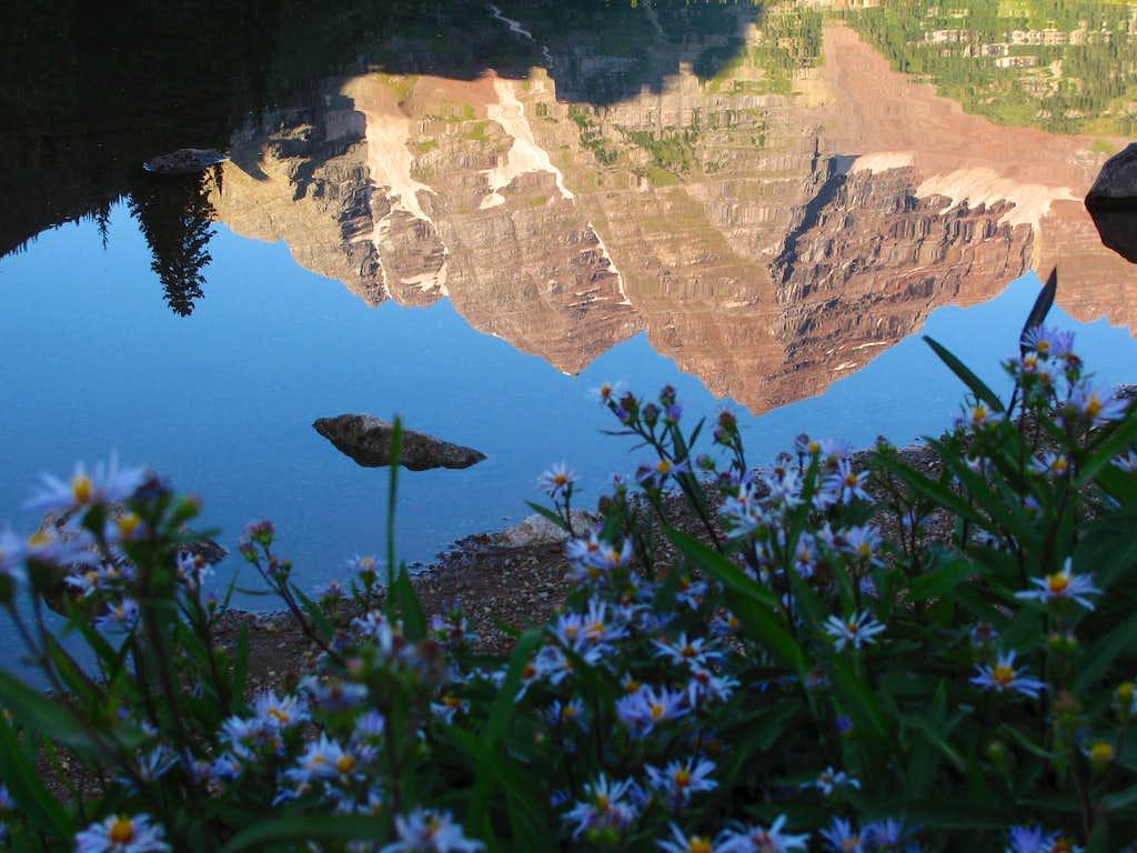 Maroon Lake wildflowers