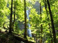 Skakavac in Peručica forest