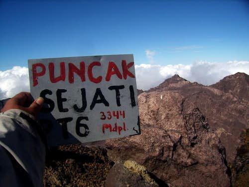 The Highest Peak Plate