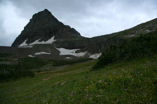 Alpine Meadows and Clements Mountain