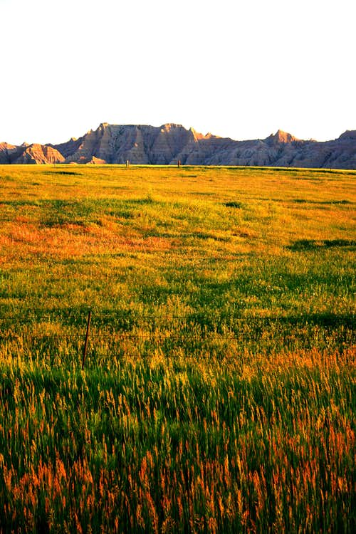 Badlands and Prairie
