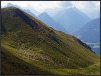 The herd above Malga Manzon