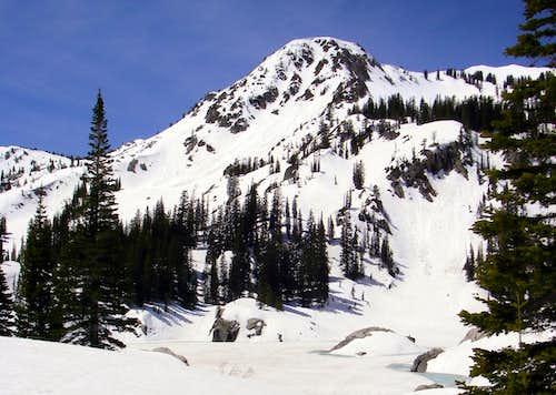 Mt Tuscarora and Mt Wolverine
