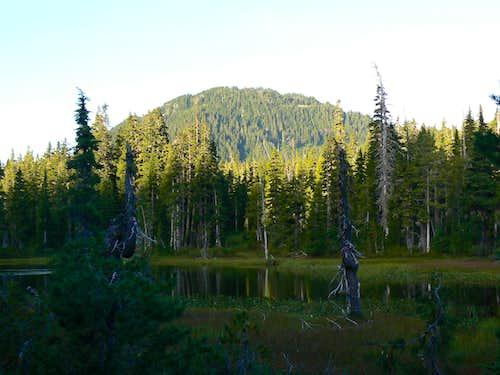 Mt Allan Brooks