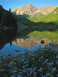 Maroon Bells & Wildflowers
