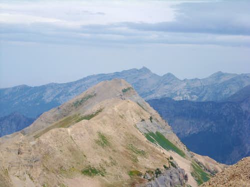 North Timp