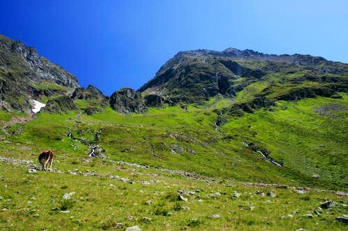 Hochgolling, 2.863m