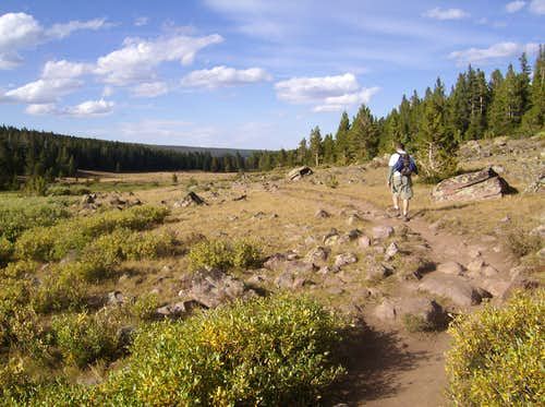 Heading back along Henry\'s Fork Trail