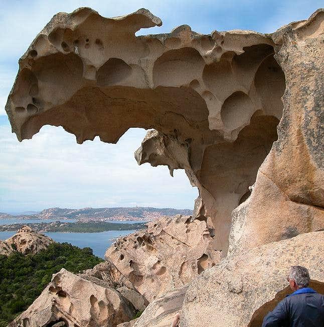 The bear's head, a huge cave....