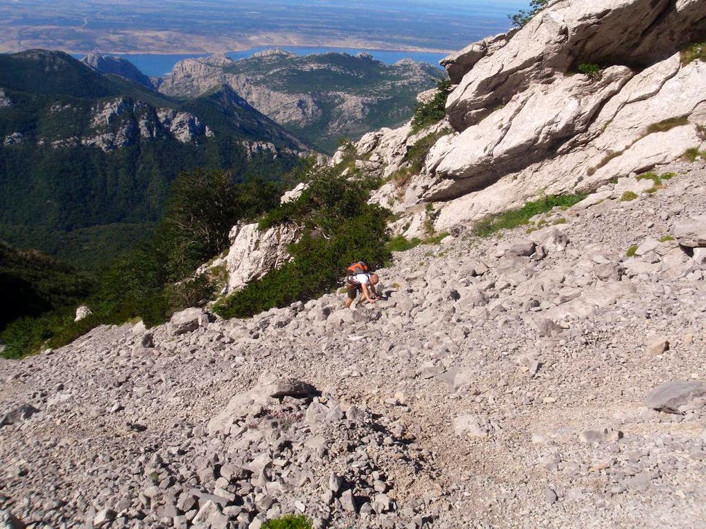 Me on the scree