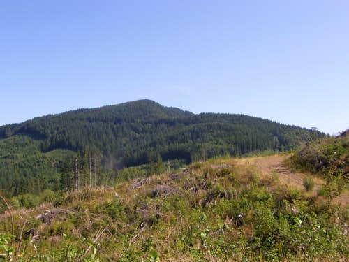 McDonald Mtn Towers from Clearcut