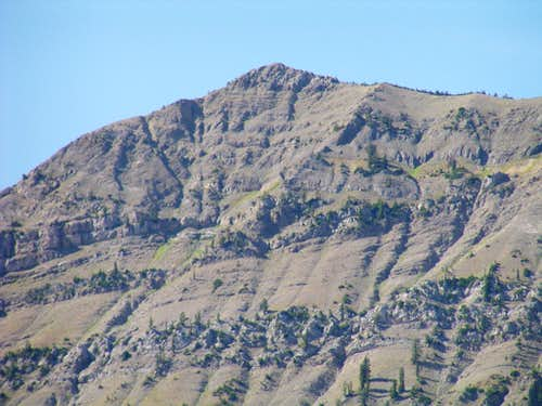 Virginia Peak